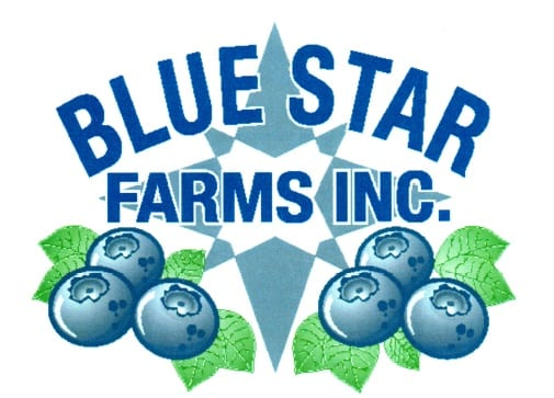 Blue Star Updated